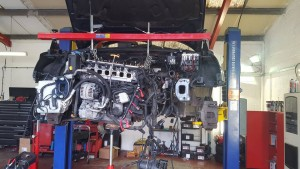 Engine timing Chain Repair Ashford